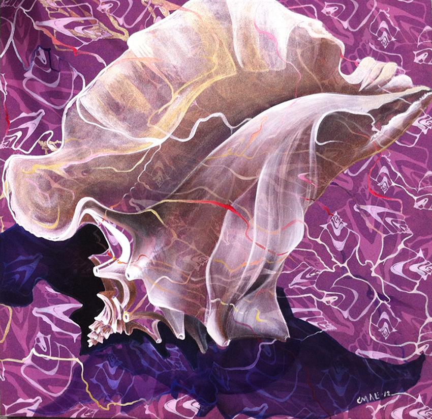 shell1NN